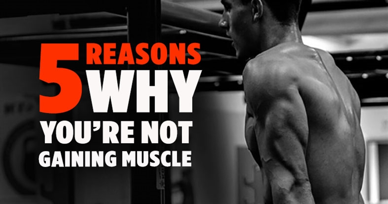Why Are You Not Gaining Muscle? 5 Factors That Are Stopping You