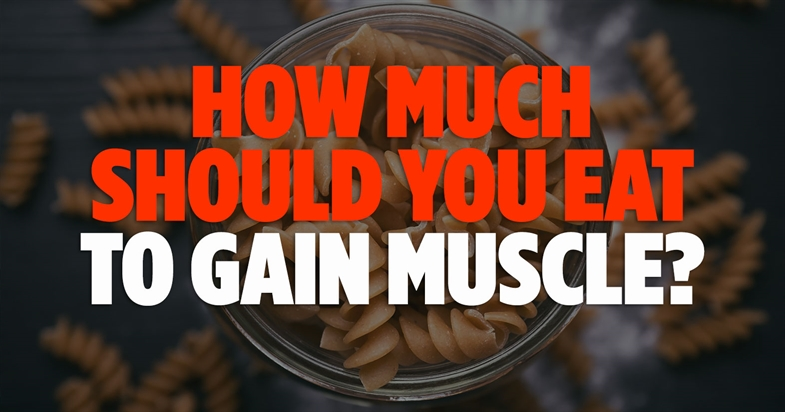 How Much Should You Eat To Gain Muscle