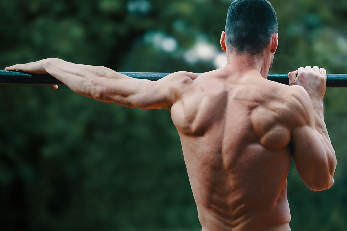 A ripped man, only torso visible in the picture, facing the camera bacwards. He is holding to a bar, and in the backgorund the blurred trees are visible. He is standing in a archer pull up position: his arms holding to a bar, his chin is oer the bar. His right hand bent at elbow, and his left hand is streched straight. His chin is over the bar and to the right.