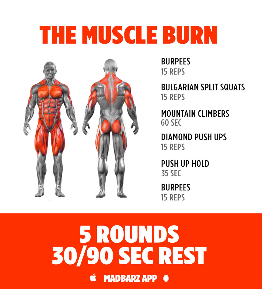 Best Workout Challenges Of 2016