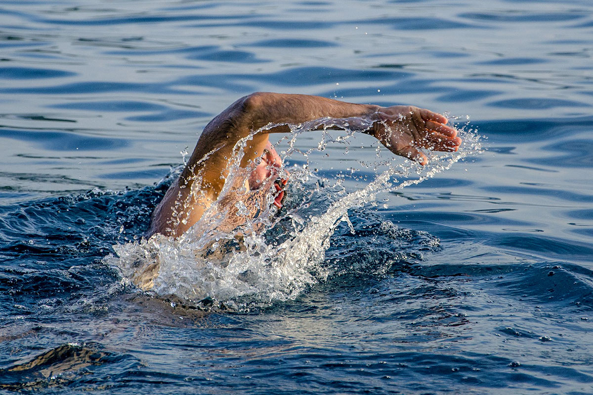 A man swimming front crawl style in the open water.